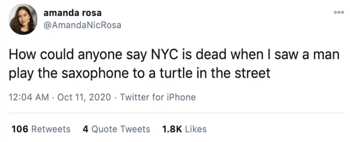 Turtle playing the Sax
